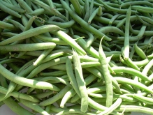 greenbeans_sunshine_print