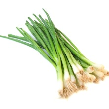 greenonions2crop
