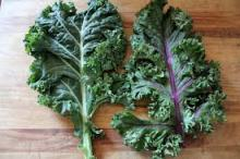kalegreenred