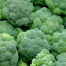 Broccolicrop