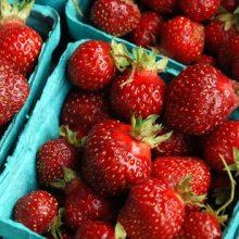 strawberriescrop
