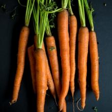 carrotscrop