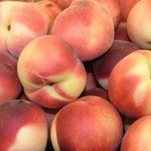 peachcrop