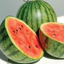 watermeloncrop