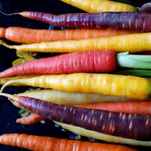 mixed color carrots
