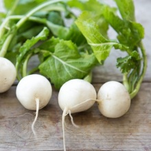white lady turnips