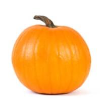 pie_pumpkin