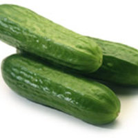 seedless_cucumber